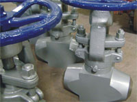 Forged T Style Globe Valve